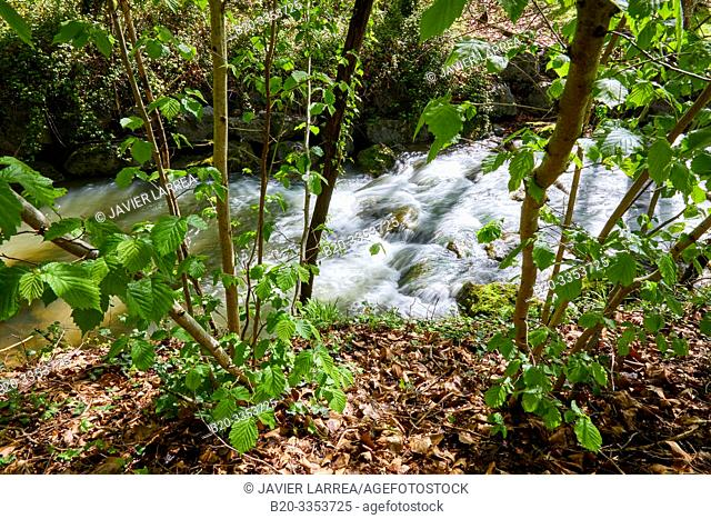 Ibaider River, Nuarbe, Gipuzkoa, Basque Country, Spain