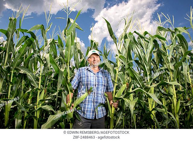 Earl Buddy Hance, Secretary of Agriculture standing in a corn field in Port Republic, Maryland, USA
