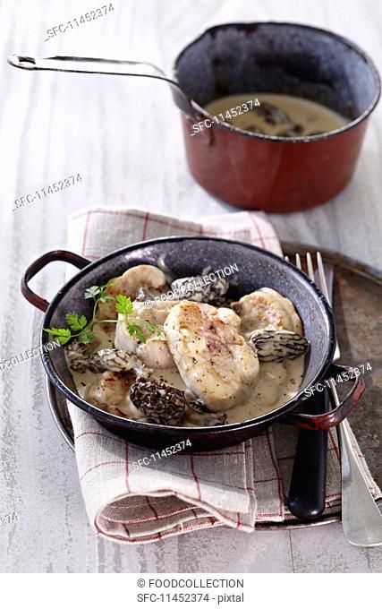 Veal sweetbreads in a morel mushroom sauce