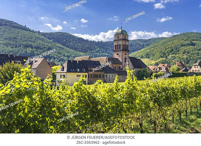 village Kaysersberg between vineyards and foothills of the Vosges, Alsace Wine Route, France
