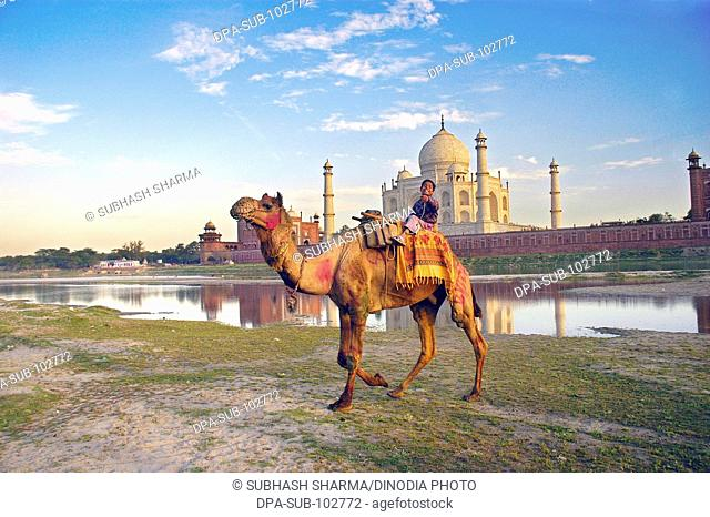 Child camel banks river Yamuna flowing Taj Mahal Agra Ancient artist artistic beautiful blue sky boy children kids clouds Color constructed 1631 A