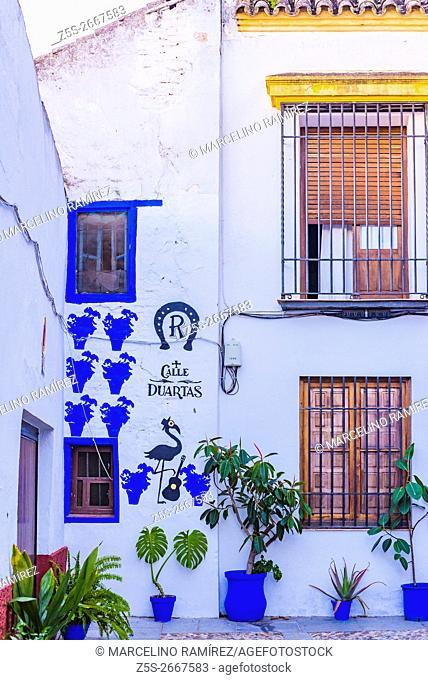 Duartas street. Córdoba, Andalusia, Spain, Europe