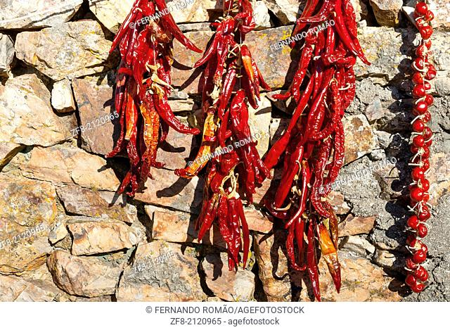 Group of chili peppers drying at the sun, Penha Garcia, Portugal