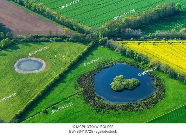 renaturated ponds at Herrenholz, aerial view, Germany, Lower Saxony, Oldenburger Muensterland, Goldenstedt