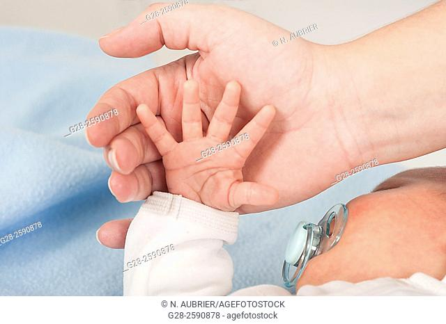 Baby 2 weeks old little boy's hand in father's hand