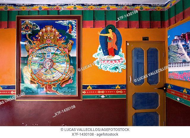 Paintings, in Dip Tse Chok Ling Monastery McLeod Ganj, Dharamsala, Himachal Pradesh state, India, Asia