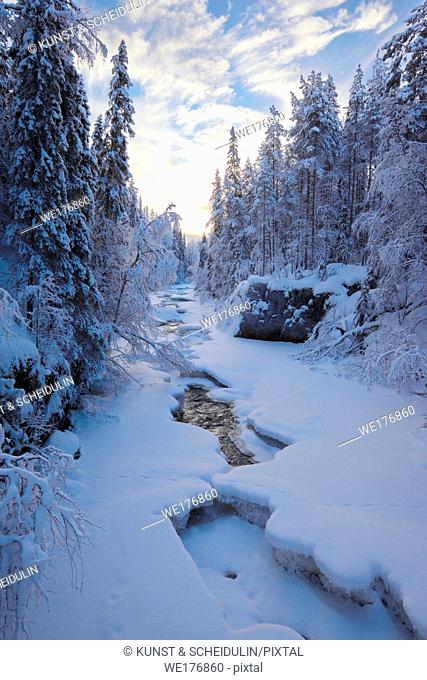 River flowing through snowy forest