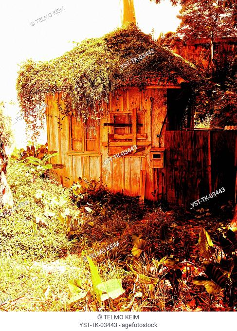 Hut, hovel, cottage, wood, scrubland, rustic, abandoned, Brazil