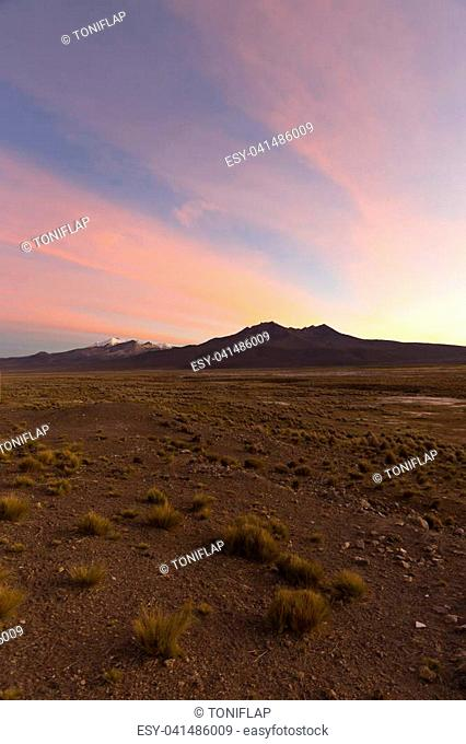 Sunset in Andes. Parinacota and Pomerade volcanos. High Andean landscape in the Andes. High Andean tundra landscape in the mountains of the Andes