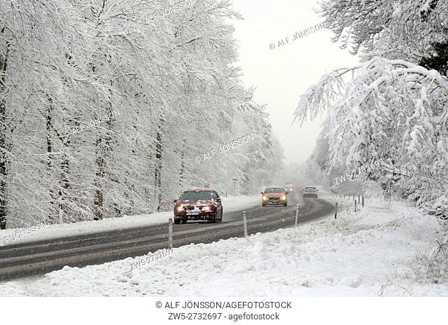 Traffic in a snowy forest in Scania; Sweden