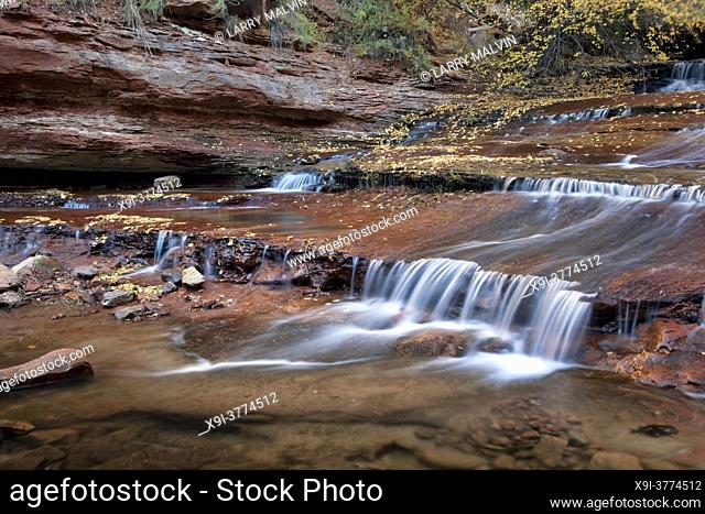 Cascades and terraces along the Left Fork of North Creek in the Subway section in Zion National Park, Utah