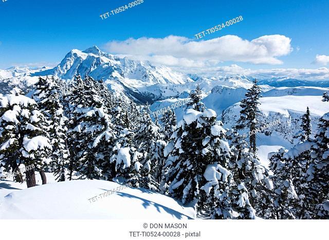 Mount Baker Ski Area in Washington State, USA