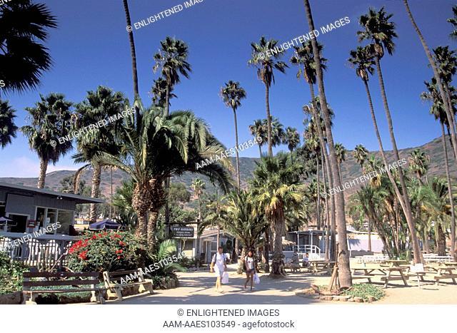 Two Harbors, Catalina Island, California