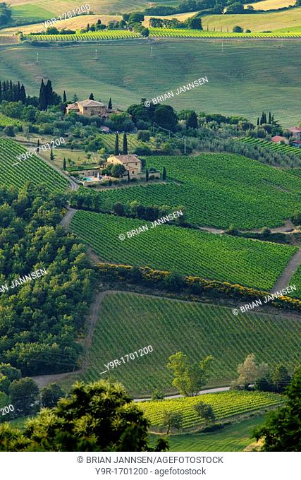 Home to the famous Brunello di Montelcino wines, the rolling hills surrounding Montelcino, Tuscany Italy