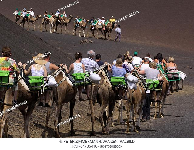 Tourists ride camels in the Timanfaya National Park on the Canary Island Lanzarote, Spain, 09 October 2015. The Timanfaya National Park is in the southwestern...