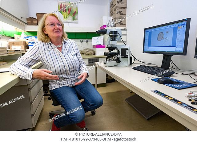 12 October 2018, Austria, Vienna: Professor Martina Weber works in the laboratory of the University Botany Institute with the world's largest pollen database...