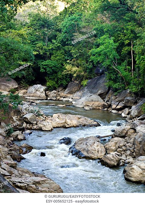 Stream in Ob Luang National Park in Chiang Mai, Thailand