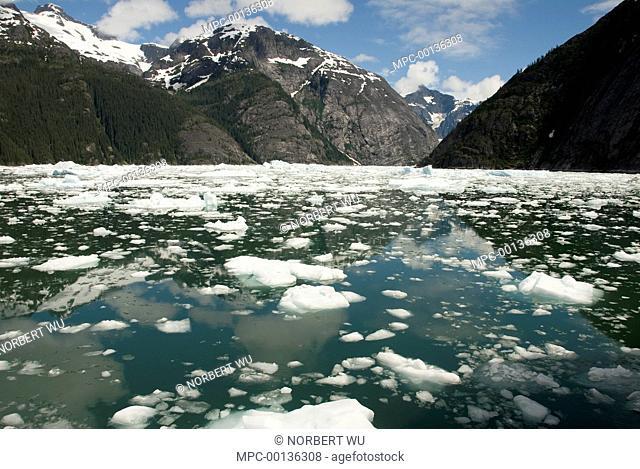 LeConte Glacier receding, showing evidence of global warming, LeConte Bay, Alaska