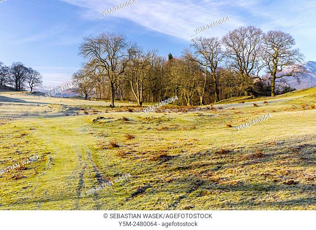 Freeze landscape near Elterwater, Lake District National Park, Cumbria, England, United Kingdom, Europe