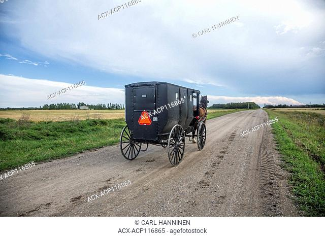 Amish horse buggy on rural road, Northern Minnesota, USA