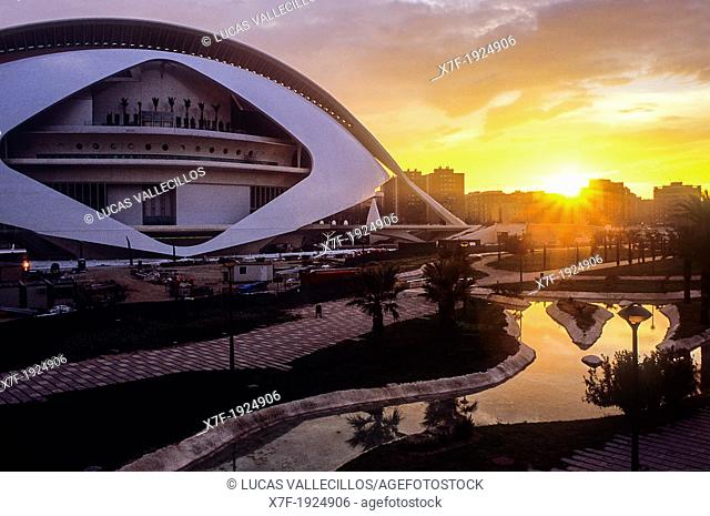 Palacio de las Artes Reina Sofía and park,City of Arts and Sciences by S  Calatrava  Valencia  Spain