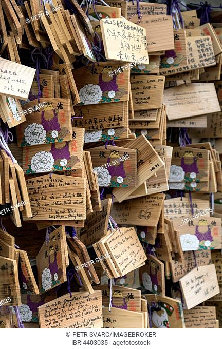 Wooden wish plaques, Ema, at Toshogu Shrine, Ueno Park, Tokyo, Japan