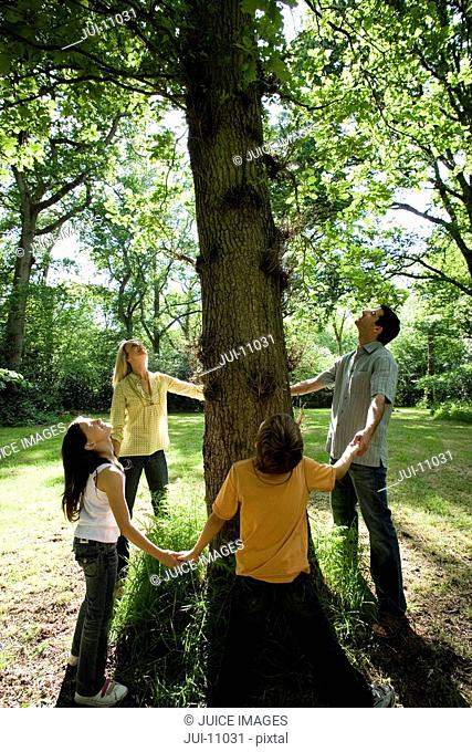 30's family holding hands around base of three in green countryside looking up into branches