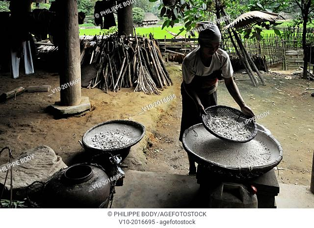 Vietnam, province of Hoa Binh, national Park of Cuc Phuong, Ban Ko Muong, White Thai ethnic group woman grinding manioc to prepare alcohol