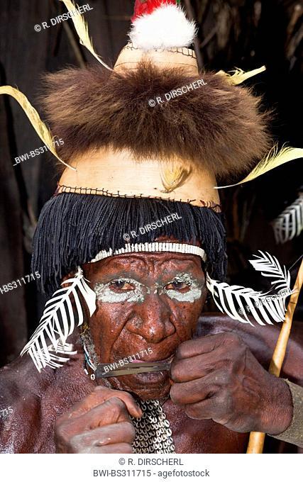 , portrait of an old Dani warrior, Indonesia, Western New Guinea, Baliem Valley