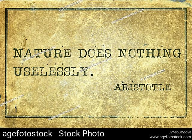 Nature does nothing uselessly - ancient Greek philosopher Aristotle quote printed on grunge vintage cardboard