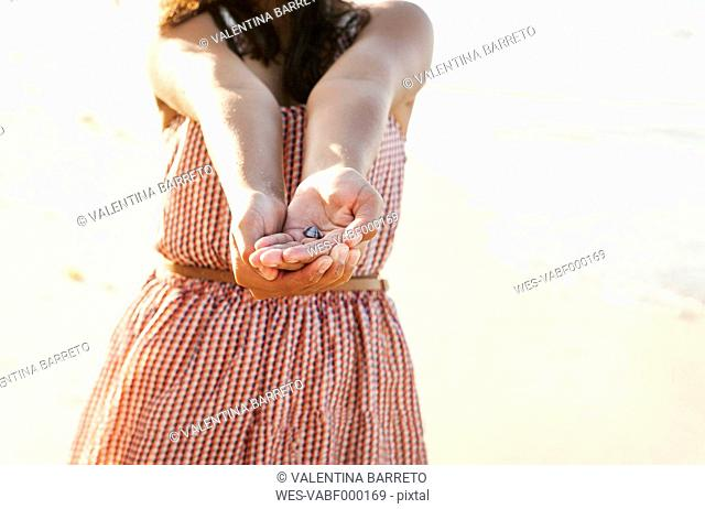 Venezuela, Isla Margarita, Juan Griego, girl's hands holding a small scallop, close-up
