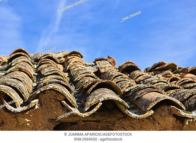 Roof Tiles over Adobe House, Province of zamora, Castilla y Leon, Spain, Europe