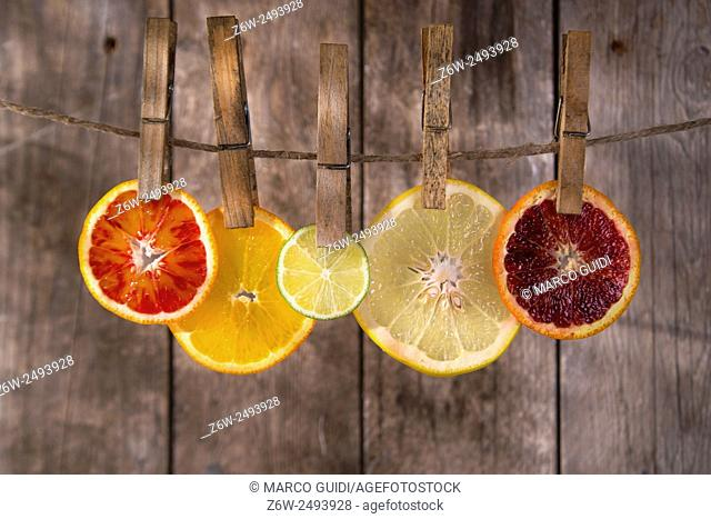 Presentation of a series of slices of citrus fruit to highlight the various colors