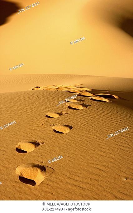Footprints in Oued Tin Tarabine. Tassili Ahaggar. Sahara desert. Algeria