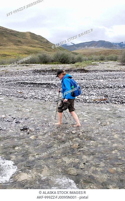 Mature female hiker crossing a stream barefoot in the Marsh Fork of the Canning River valley in the Brooks Range, Arctic National Wildlife Refuge, Alaska