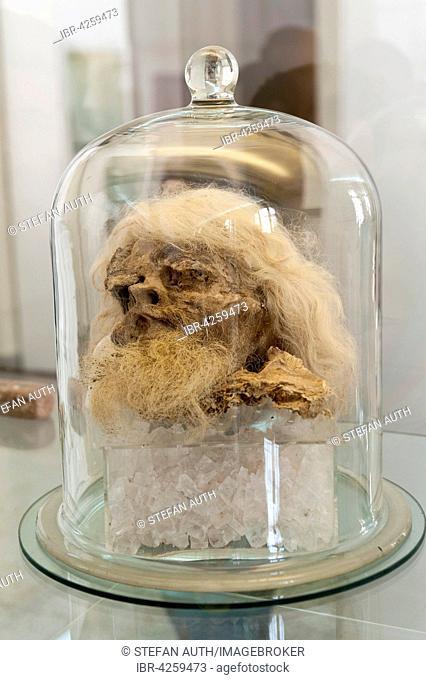 Mummy, mummified head of a man under glass bell, man from the salt mines of Zanjan, National Museum of Iran, Tehran, Iran