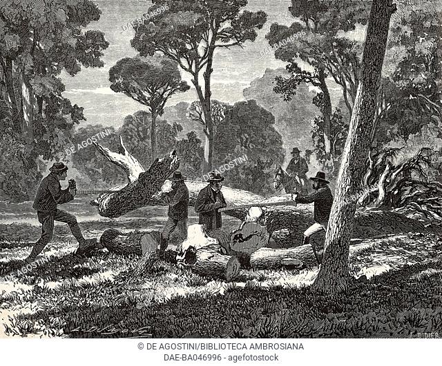 Woodchoppers in Rome, Italy, illustration by Didier from L'Illustration, Journal Universel, No 1154, Volume XLV, April 8, 1865