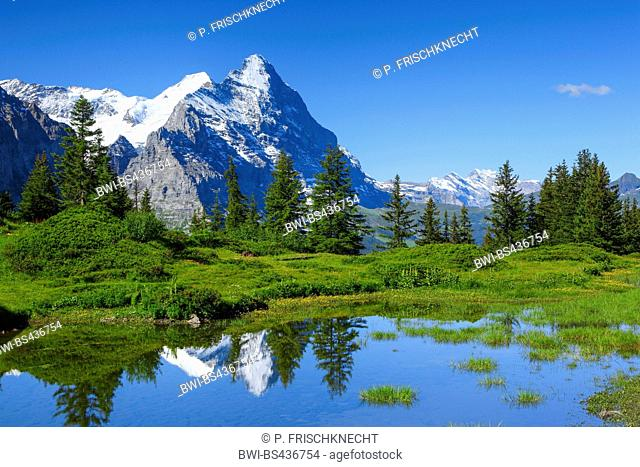 mountain lake with Eiger and Moench, Switzerland, Bernese Oberland
