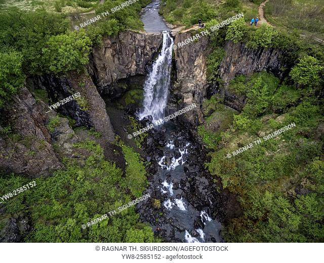 Svartifoss waterfalls. Unique waterfalls cascading over basalt columns, Skaftafell National Park, Iceland. Drone photography