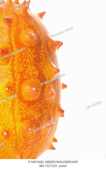 Detail view, horned melon, hedged gourd, melano, or kiwano (Cucumis metuliferus)