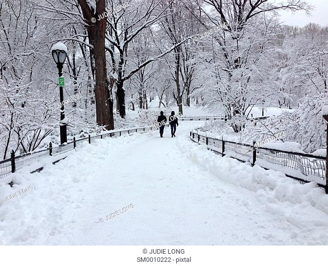 Snowy Central Park, Manhattan, New York City