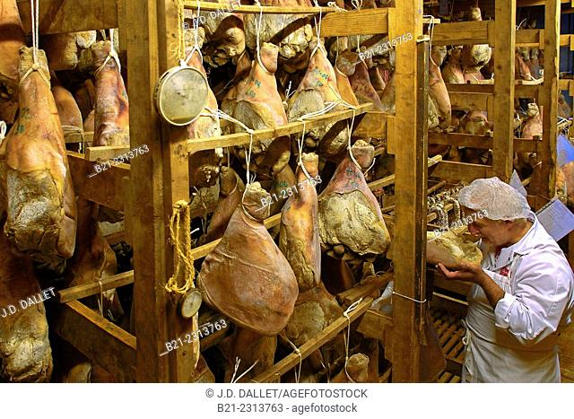 Mr. Philippe Bedounac smelling the hams of Le Cayrolais (traditional sausages business from 1908), Cayrols, Cantal, Auvergne, France