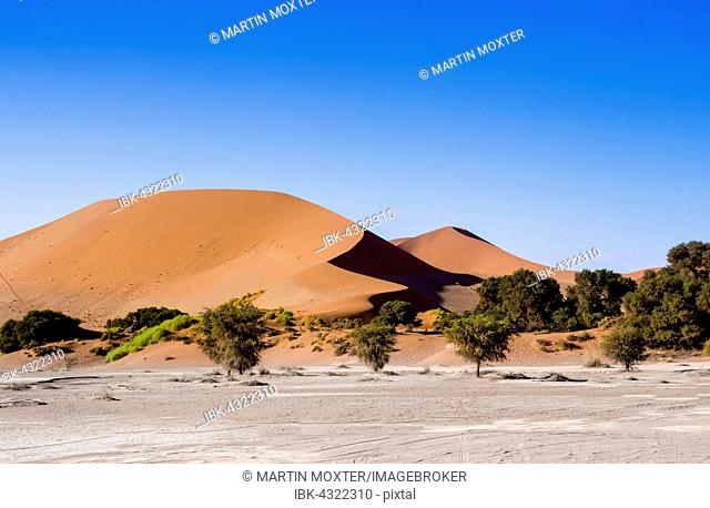Sand dunes on the edge of the Namib Desert, Sossusvlei, Namib-Naukluft National Park, Hardap, Namibia