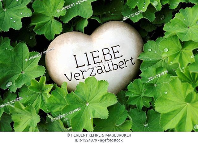 Heart of stone with the words Liebe verzaubert, love is spellbinding as a garden decoration between rockery plants