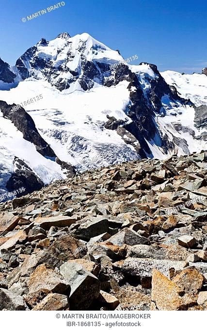 View from Piz Tschierva Mountain towards Piz Roseg Mountain, Bernina Range, Grisons, Switzerland, Europe