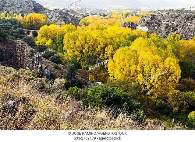 Autumn at the Dulce gorge in Aragosa. Guadalajara. Castilla la Mancha. Spain. Europe
