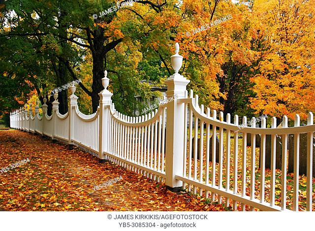 Autumn leaves are framed by a white picket fence