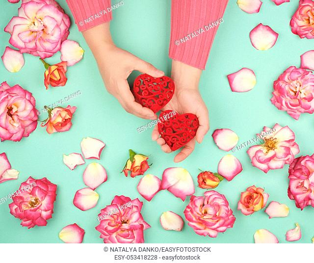 two female hands hold red hearts , green background with pink rose petals, top view, holiday background