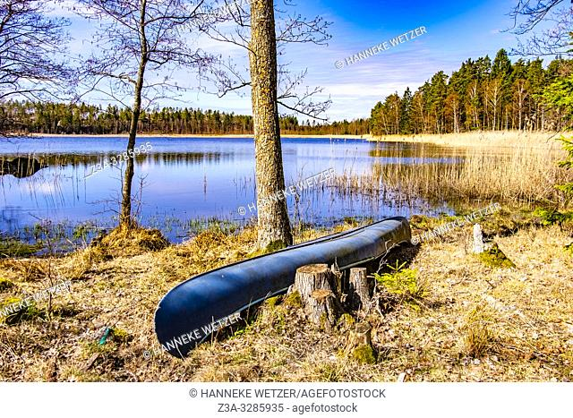 Canoe in the forest of Sweden