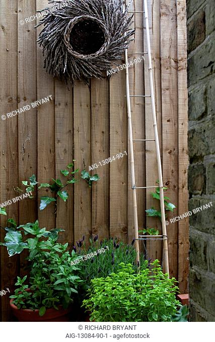 Suburban Garden. Cane ladder and woven twig decoration on close-boarded fence